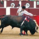 """Paul Abadía """"Serranito"""" en un lance a """"Pimentito"""", ejemplar que fue reconocido como el Toro más Bravo de la Feria 2007."""