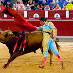 Alfonso Cadaval - Su segundo toro - Corrida Feria de Albacete del 13 de Septiembre de 2016-2