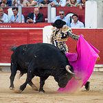 Fotos Feria Taurina -13-09-18 - La Taurino Manchega - Roca Rey - Primer toro - Foto María Vázquez-13