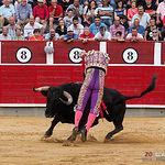 Fotos El Fandi - Feria Taurina - Segundo toro - 12-09-18