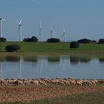 Las fuentes de energía renovable y el agua constituyen el paisaje bonillero.