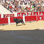 Perera - Su primer toro-1 - 10-09-16