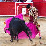 Ginés Marín - Su primer toro corrida Feria Taurina de Albacete - 14-09-17