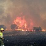 El 29,74% de los incendios ocurridos en Castilla-La Mancha en 2007 fueron provocados.