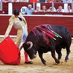 Vicente Barrera tuvo una memorable tarde en Albacete, una de las mejores que se recuerdan del valenciano. La Presidencia de la Plaza privó con su prepotencia la salida a hombros del diestro al negarse a dar las dos orejas de su 2º.