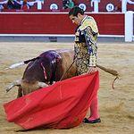 David Martínez  - Segundo toro - 11-07-17