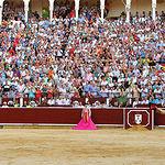 La afición de Albacete demostró su entrega y entusiasmo en todos los festejos de la Feria de Albacete 2009.