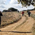 La nueva ruta de senderismo organizada por la Diputación Provincial de Albacete y que se ha realizado el domingo en Munera. Foto: La Mancha Press_Luis Vizcaíno