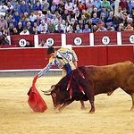 Rubén Pinar - Su segundo toro-1 - Feria Taurina Albacete - 14-09-16 - Para web