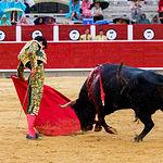 Pablo Aguado - Su segundo toro - Corrida Feria de Albacete del 13-09-2016