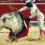 José Garrido - Segundo Toro - Feria Taurina de Albacete 2017 - 12 de septiembre. Foto José María Mondejar
