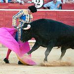 Pedro Jesús Merín en su primer toro con el capote.