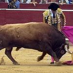 """""""El Juli"""" con el capote en su primer toro."""