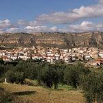 El sector agrario es de vital importancia para el medio rural, suponiendo en muchos casos la garantía de su actividad económica. Foto de la localidad de Férez, en Albacete.