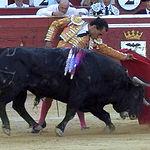 Ivan Fandiño en su primer toro.