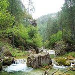 Serranía de Cuenca. Alto Escabas. Foto Blog Magia Serrana.