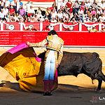 Mario Sotos - Novillada Feria Taurina Albacete - 11-09-17