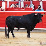 El Juli - Su primer toro - Corrida 15-09-17