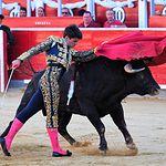 Toñete - Primer toro - 11-09-17