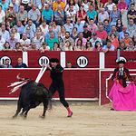 Segundo toro de Roca Rey en la Corrida Benéfica de Asprona del 11 de junio de 2017