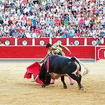 Miguel Ángel Perera - Su segundo toro -10-09-16
