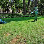 Lugar en el que fue arrancada una de las esculturas instaladas en el Abelardo Sánchez