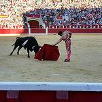 José Garrido - Corrida 17-09-15