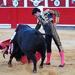 Toñete - Segundo toro - 11-07-17