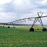 Puede decirse que el acuífero 18 es el responsable del notable acrecentamiento de las tierras regadas en Albacete.