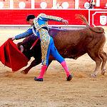 Paco Ureña - Su primer toro-3 - Feria Taurina Albacete - 14-09-16 - Para web