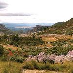 """La Sierra del Segura en la provincia de Albacete fue utilizada por el director de cine manchego José Luis Cuerda para filmar  """"Amanece, que no es poco"""". En la imagen, un paisaje de  Molinicos una de las localidades donde se rodó la película."""