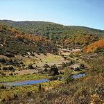 El río Lillas a su paso por un bello paraje del Parque del Hayedo de Tejera Negra.