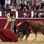David de MIranda - Feria Taurina Albacete - 11-09-19 - Foto María Vázquez.