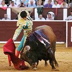 Sebastián Castella, en uno de los lances realizados en la faena que fue premiada como la mejor de la Feria de Albacete.
