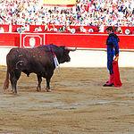 Sebastián Castella en su primer toro - Corrida del 10-09-16