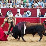 Fotos Feria Taurina -13-09-18 - La Taurino Manchega - Enrique Ponce - Segundo toro - Foto María Vázquez-21