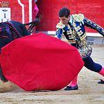 David Martínez - Primer toro - 11-09-17