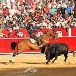 Diego Ventura-12 - Su primer toro