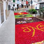 Típicas alfombras realizadas con flores naturales en Bogarra.