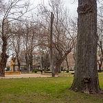Parque La Fiesta del Árbol en Albacete