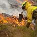 El Ministerio de Agricultura, Alimentación y Medio Ambiente recopila los principales aspectos de la normativa autonómica sobre prevención de incendios forestales. Foto: Ministerio de Agricultura, Alimentación y Medio Ambiente