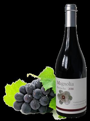 Vinos Magnolia Garnacha barrica 2016.