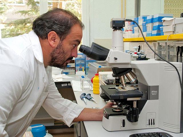 Julián Garde es uno de los investigadores en técnicas de reproducción del ciervo ibérico más importantes de España.