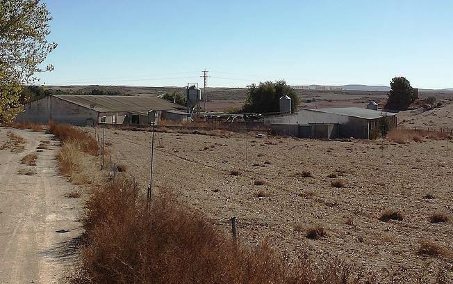Explotación porcina que se encuentra a escasos 500 metros del núcleo urbano de Tinajeros.